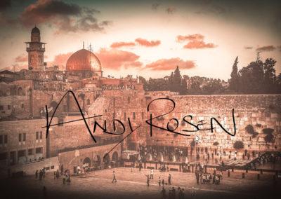 andy-rosen